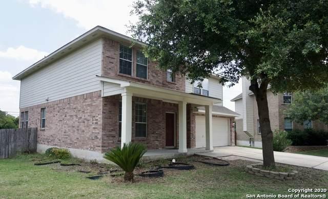 205 C.J. Jones Cove, Cibolo, TX 78108 (MLS #1546541) :: The Lopez Group