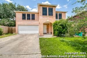 8403 Ledford Ln, Converse, TX 78109 (MLS #1546693) :: The Real Estate Jesus Team