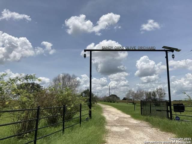25195 Mathis Rd, Elmendorf, TX 78112 (MLS #1546840) :: The Mullen Group   RE/MAX Access