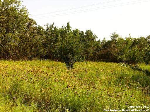 0 Happy Hollow, Bandera, TX 78003 (MLS #1546982) :: Carolina Garcia Real Estate Group