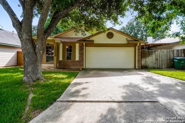 15539 Knollglade, San Antonio, TX 78247 (MLS #1547078) :: The Gradiz Group