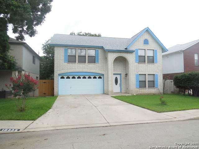 16535 Drum Oak, San Antonio, TX 78232 (MLS #1547135) :: Carter Fine Homes - Keller Williams Heritage