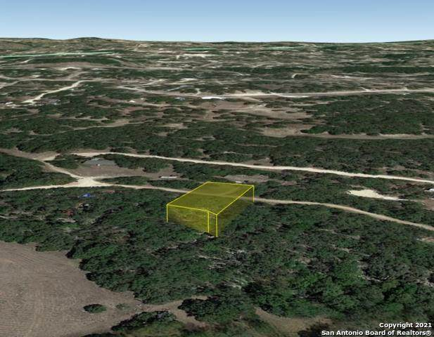 00 Lake Park Dr, Spring Branch, TX 78070 (MLS #1547246) :: Texas Premier Realty