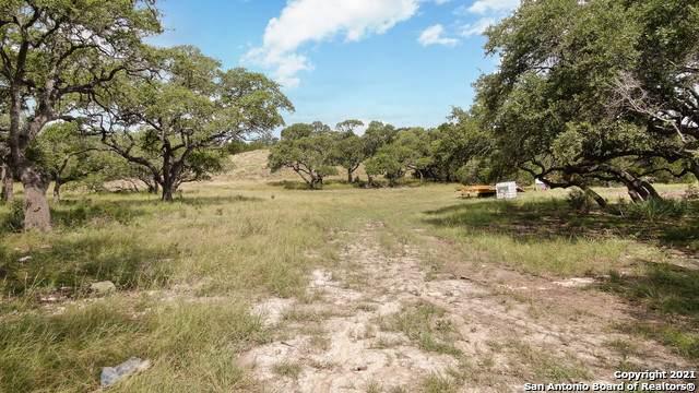 874 Maximino Ridge, Bulverde, TX 78163 (MLS #1547275) :: The Gradiz Group