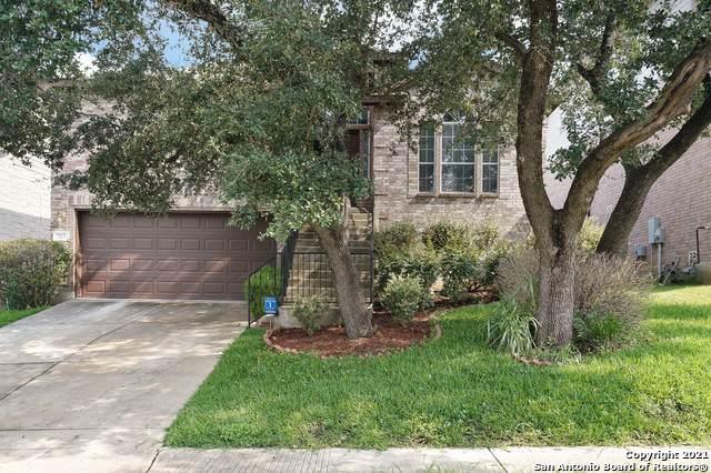 707 Lorimor Ct, San Antonio, TX 78258 (MLS #1547305) :: Texas Premier Realty