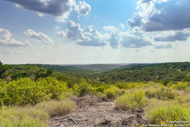 LOT 17 Pr 2775, Mico, TX 78056 (MLS #1547398) :: The Glover Homes & Land Group