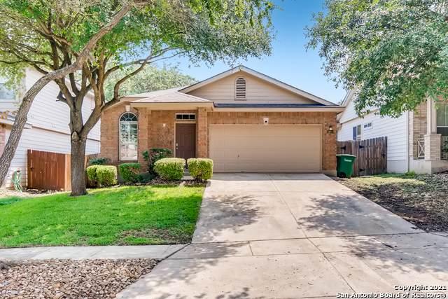 15919 Drexel Run, San Antonio, TX 78247 (#1547473) :: Zina & Co. Real Estate