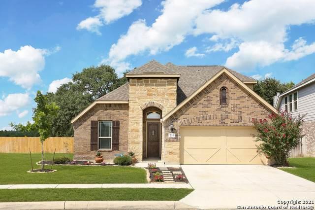 251 Parkview Terrace, Boerne, TX 78006 (MLS #1547551) :: Vivid Realty