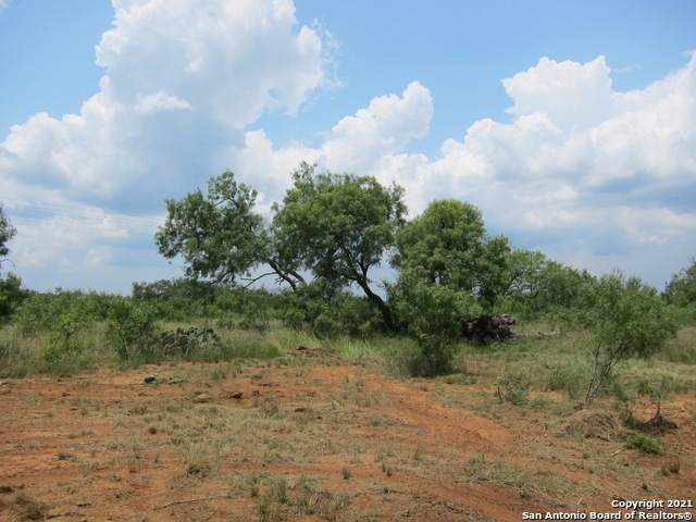 126 County Road 157, Floresville, TX 78114 (MLS #1547621) :: The Mullen Group | RE/MAX Access