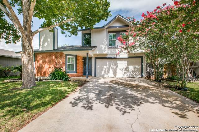 6110 Valley Tree, San Antonio, TX 78250 (#1547656) :: Zina & Co. Real Estate