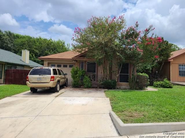 3838 Candlecrown Ct, San Antonio, TX 78244 (MLS #1547694) :: Countdown Realty Team