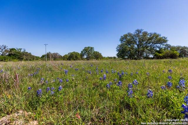 TRACT 13 Taylorsville Rd, Lockhart, TX 78662 (MLS #1547779) :: The Mullen Group | RE/MAX Access