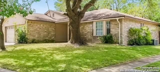 8131 Forest Dawn, Live Oak, TX 78233 (MLS #1547802) :: The Gradiz Group