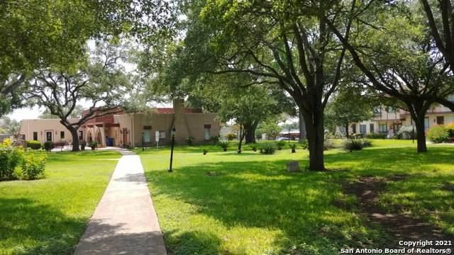 10919 Crown Park, San Antonio, TX 78239 (MLS #1547821) :: Exquisite Properties, LLC