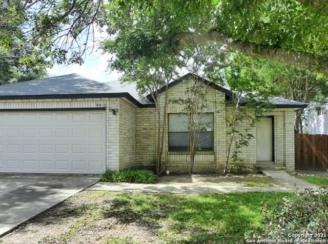 9910 Morningfield, San Antonio, TX 78250 (MLS #1547916) :: The Real Estate Jesus Team