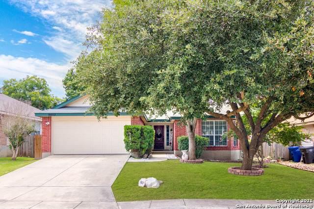 9807 Sandie, Helotes, TX 78023 (MLS #1548058) :: Exquisite Properties, LLC