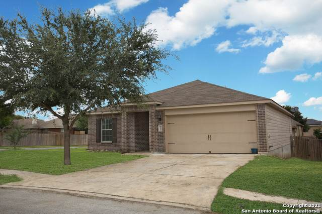 6103 Bear Meadows, San Antonio, TX 78222 (MLS #1548079) :: The Gradiz Group