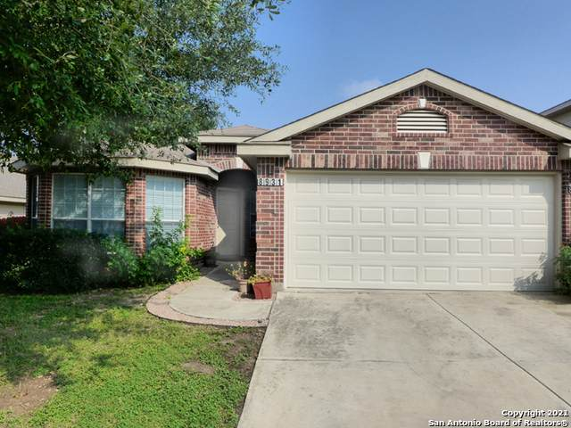 8931 Walnut Springs, Universal City, TX 78148 (MLS #1548080) :: Williams Realty & Ranches, LLC