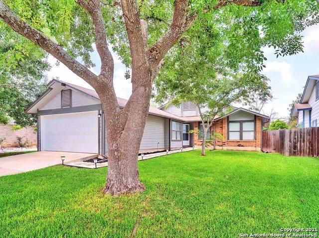 5783 Larkdale Dr, San Antonio, TX 78233 (#1548187) :: Zina & Co. Real Estate