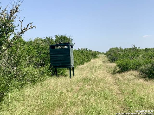 LOT 37, 3969 County Road 104, San Diego, TX 78384 (MLS #1548229) :: REsource Realty