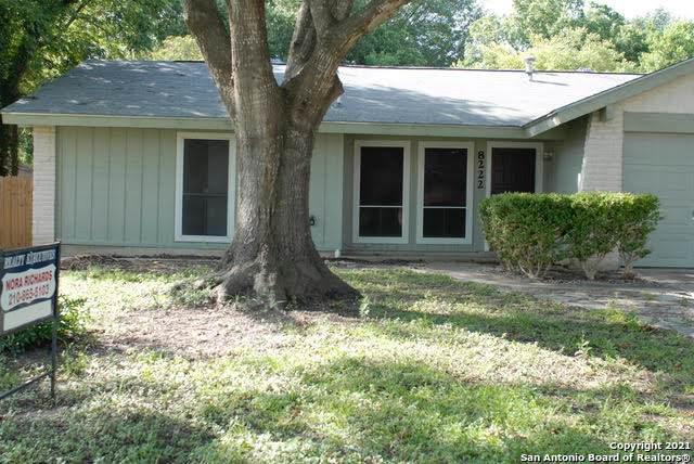 8222 Phoenix Ave, Universal City, TX 78148 (MLS #1548248) :: Tom White Group