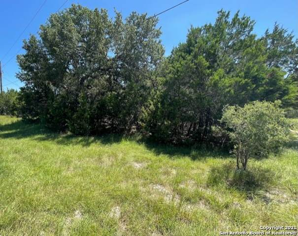 360 Warbler Dr, Spring Branch, TX 78070 (MLS #1548271) :: Exquisite Properties, LLC