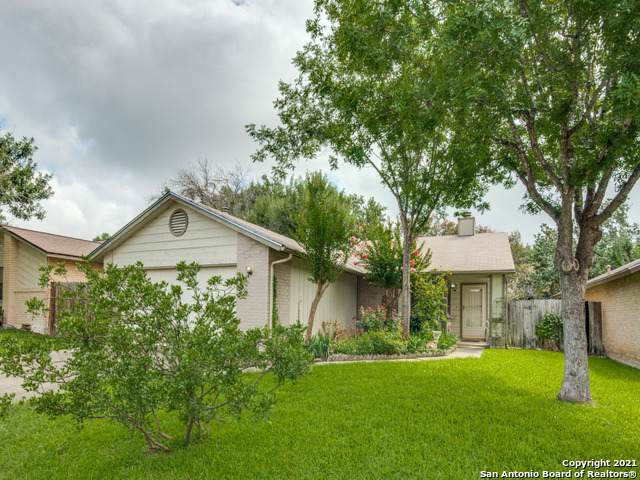 13234 Larkwalk St, San Antonio, TX 78233 (#1548408) :: Zina & Co. Real Estate