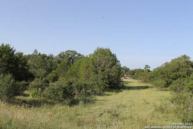 117 Heron Pass, Spring Branch, TX 78070 (MLS #1548576) :: Exquisite Properties, LLC