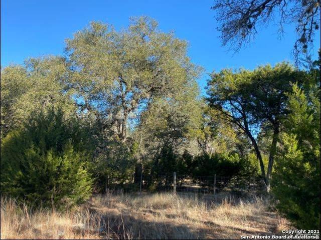 LOT 12 Riverwood, Boerne, TX 78006 (#1548604) :: Zina & Co. Real Estate