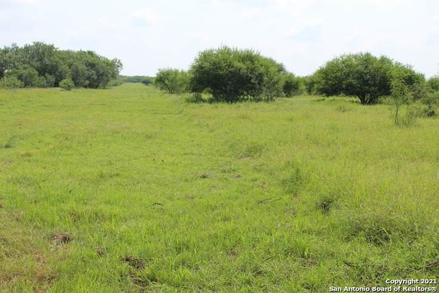 5280 Jim Brite Rd, Pleasanton, TX 78064 (MLS #1548683) :: Carter Fine Homes - Keller Williams Heritage