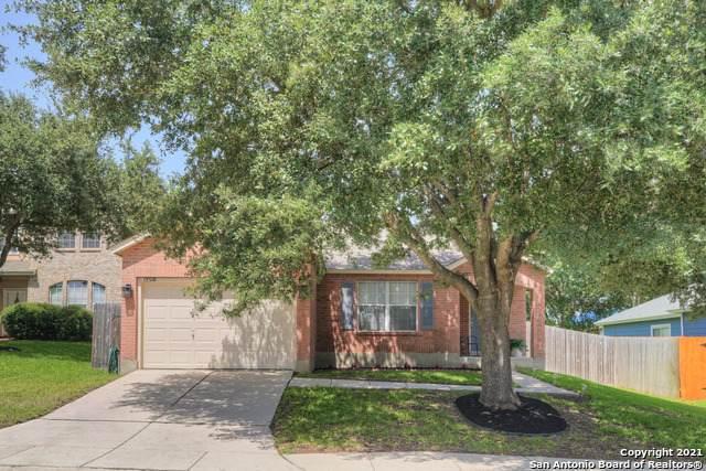 15510 Spring Bird, San Antonio, TX 78247 (MLS #1548685) :: Exquisite Properties, LLC