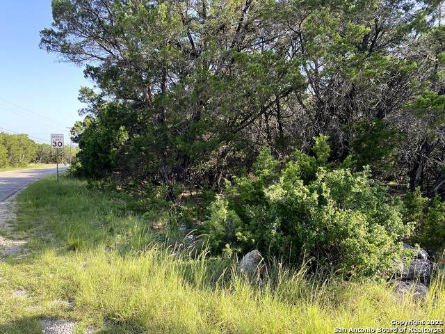 LOT 293 Winding Creek Trail, Spring Branch, TX 78070 (MLS #1548729) :: The Castillo Group