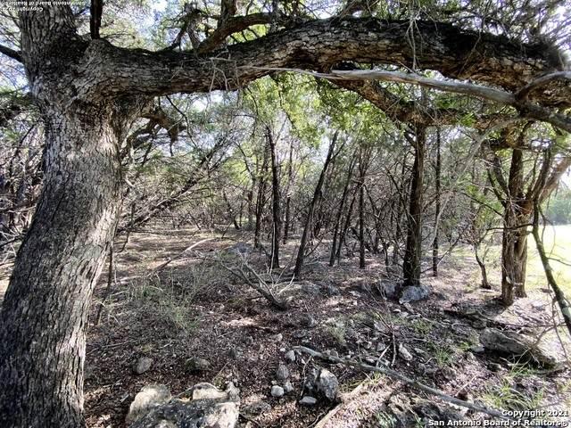 LOT 294 Winding Creek Trail, Spring Branch, TX 78070 (MLS #1548732) :: The Castillo Group