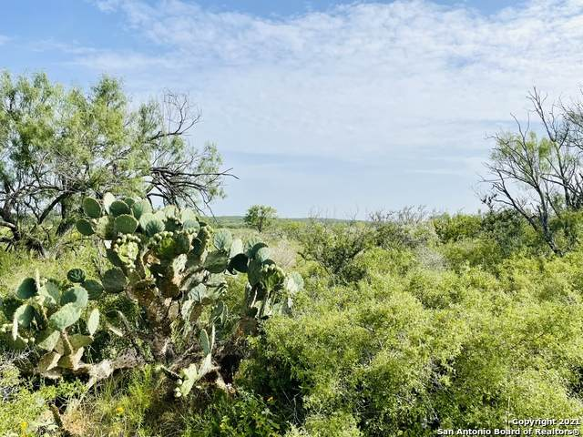 TBD County Rd 3000, Pearsall, TX 78061 (MLS #1548783) :: Vivid Realty