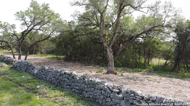 1000 Bear Creek Trail, New Braunfels, TX 78132 (MLS #1548915) :: The Castillo Group