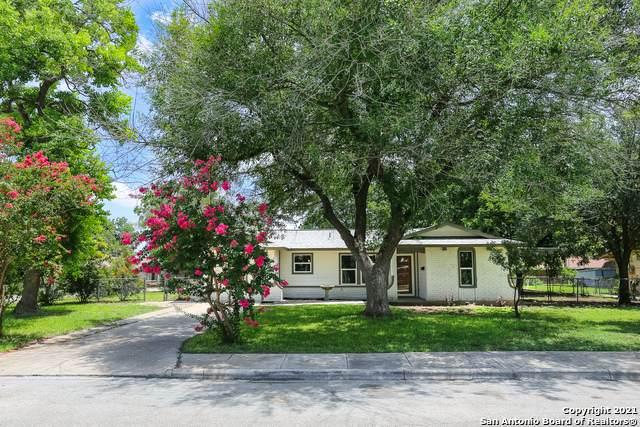 1210 Chestnut Dr, Schertz, TX 78154 (MLS #1549018) :: The Castillo Group