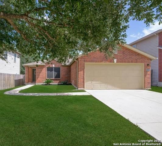 6042 Donely Pl, San Antonio, TX 78247 (MLS #1549019) :: Exquisite Properties, LLC