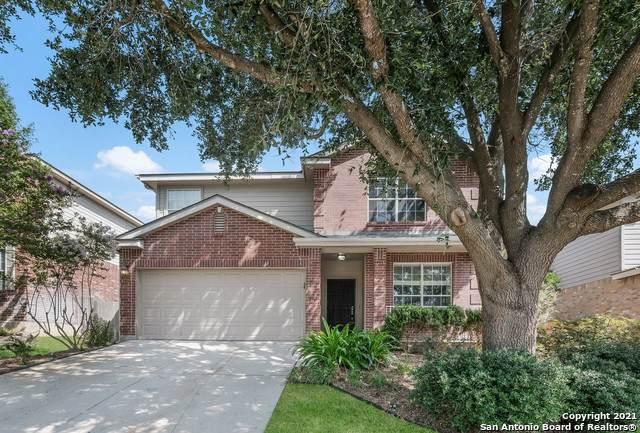 21531 Encino Lookout, San Antonio, TX 78259 (MLS #1549031) :: The Castillo Group