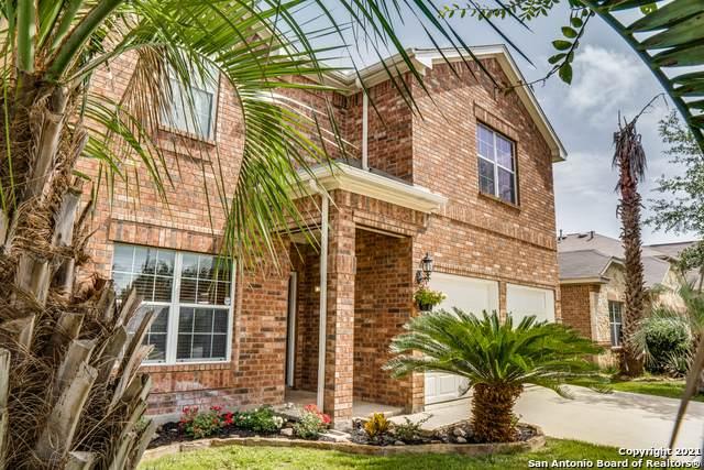 12019 Edward Conrad Rd, San Antonio, TX 78253 (MLS #1549089) :: Vivid Realty