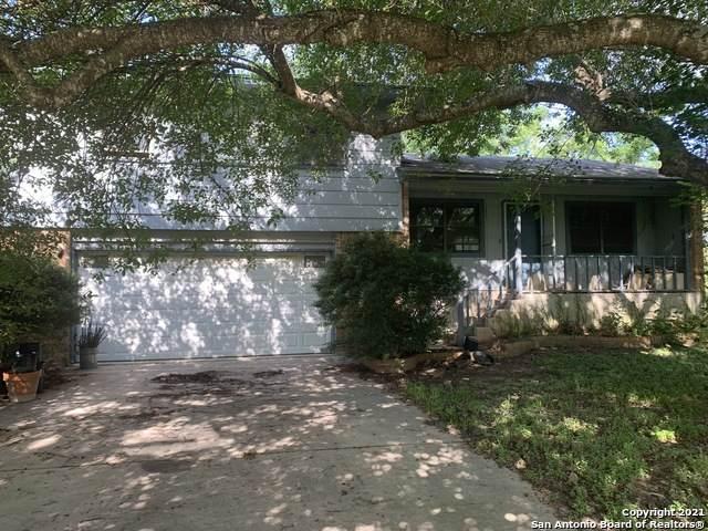 169 Rio Grande Dr, Seguin, TX 78155 (MLS #1549124) :: Texas Premier Realty