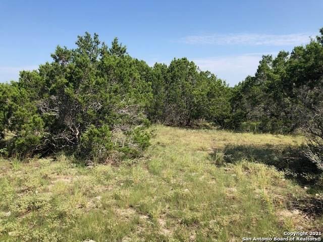 119 Bindweed Ln, Spring Branch, TX 78070 (MLS #1549172) :: Exquisite Properties, LLC