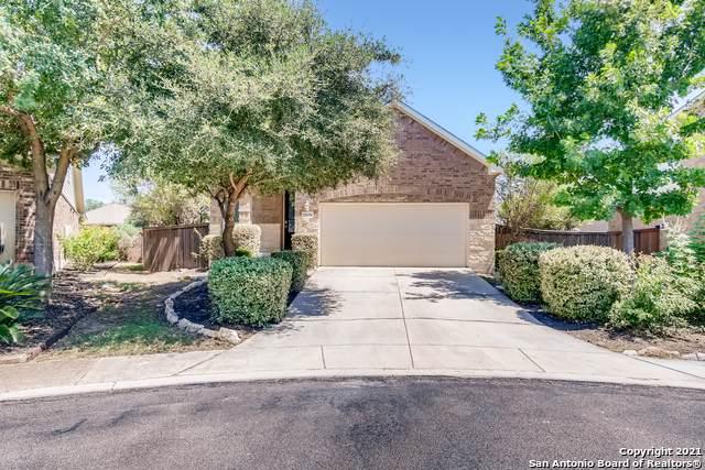 12639 Perini Ranch, San Antonio, TX 78254 (MLS #1549249) :: Tom White Group