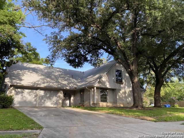14202 Mesquite Smoke St, San Antonio, TX 78217 (MLS #1549358) :: Vivid Realty