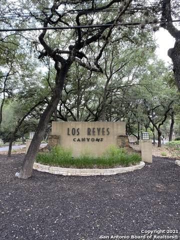 10890 Basal Edge Rd, Helotes, TX 78023 (MLS #1549369) :: Carolina Garcia Real Estate Group