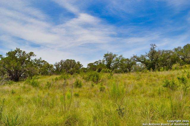 91 Billings Forest, Boerne, TX 78006 (MLS #1549397) :: Tom White Group