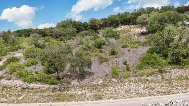 BLK 10 LOT 14 Linwood Ridge, San Antonio, TX 78255 (MLS #1549465) :: The Lopez Group