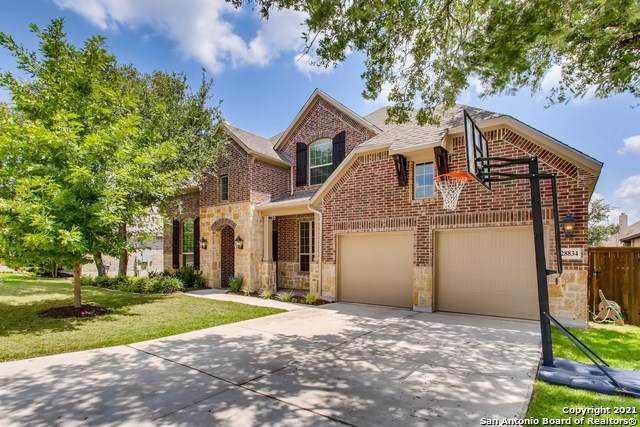 28834 Porch Swing, Boerne, TX 78006 (#1549546) :: Zina & Co. Real Estate