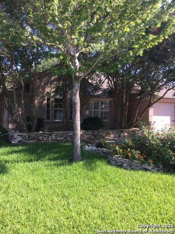 330 Walnut Heights Blvd, New Braunfels, TX 78130 (#1549570) :: The Perry Henderson Group at Berkshire Hathaway Texas Realty