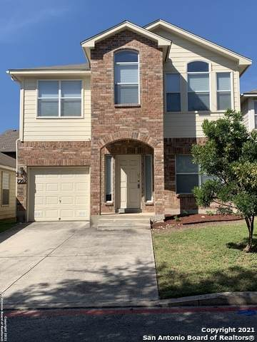 7202 Painter Way, San Antonio, TX 78240 (MLS #1549672) :: EXP Realty