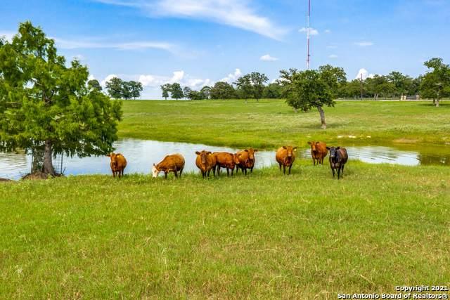 1920 & 1436 Sunflower, Luling, TX 78648 (MLS #1549765) :: Texas Premier Realty